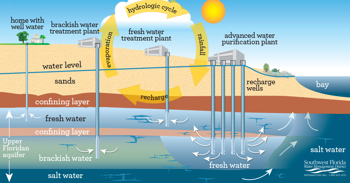 where does my water come from water cycle SWFWMD water management district